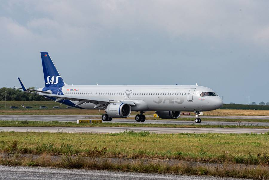 INCIDENT: A320neo Go-Around To Avoid Birds (and fails)!